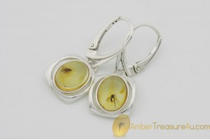Genuine BALTIC AMBER Silver Earrings w Fossil Inclusions