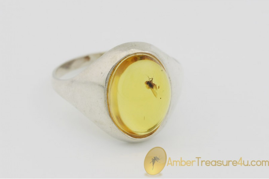 Genuine BALTIC AMBER Silver Ring 9 - 19mm w Fossil Inclusion - FLY