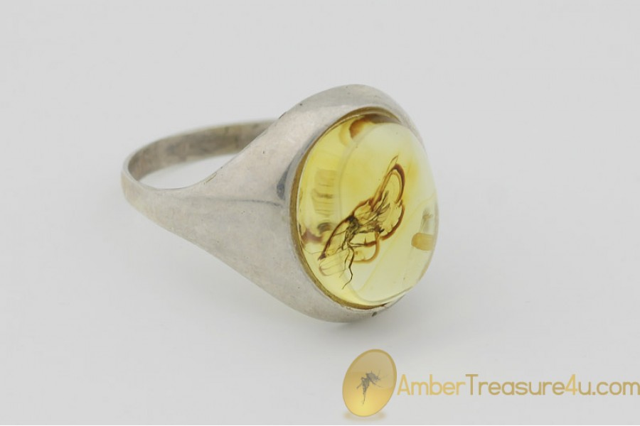 Genuine BALTIC AMBER Silver Ring 7.75 - 18mm w Fossil Inclusion - WASP
