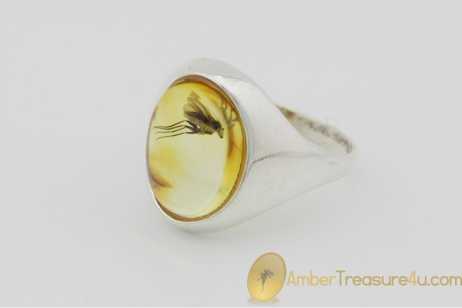 Genuine BALTIC AMBER Silver Ring 6.5 - 17mm w Fossil Inclusion - LONG LEGGED FLY