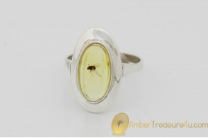 Genuine BALTIC AMBER Silver Ring 7.75 - 18mm w Fossil Inclusion - FLY