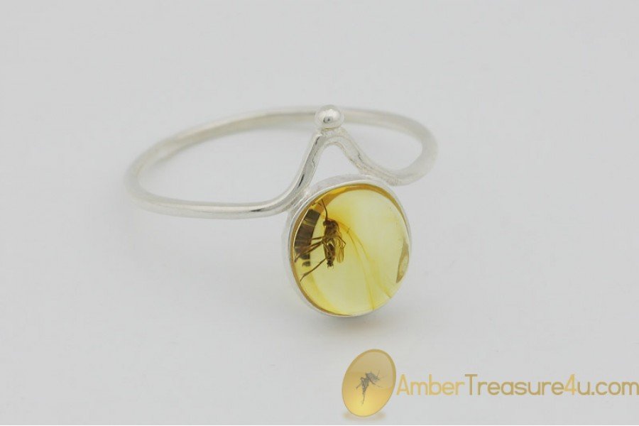 Genuine BALTIC AMBER Silver Ring 9.5 - 19.5mm w Fossil Inclusion - GNAT