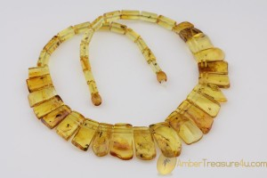 All Beads with FOSSIL INSECTS - Genuine BALTIC AMBER Choker