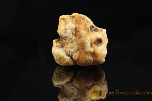 Natural Rare Butterscotch & White  Genuine BALTIC AMBER Stone