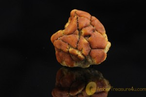 Natural Rare Butterscotch Genuine BALTIC AMBER Stone
