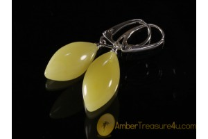 Butter Color Genuine BALTIC AMBER Silver Earrings