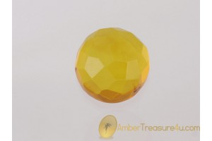Faceted Clear Lemon Color BALTIC AMBER Cabochon 6